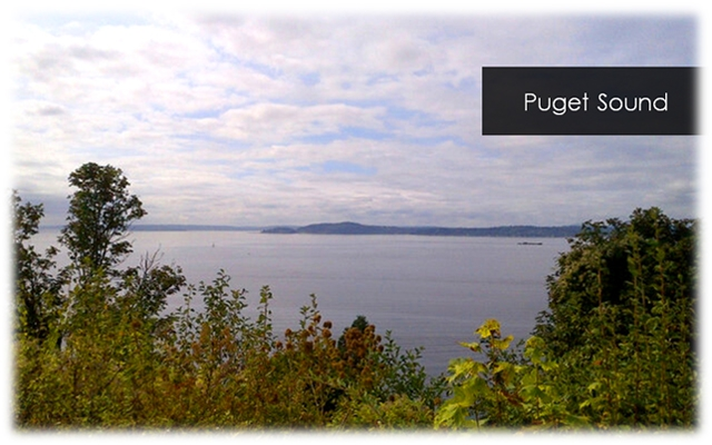 PugetSound2